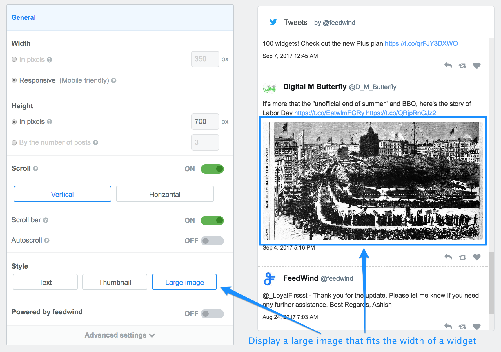 Display a large image on a Twitter widget
